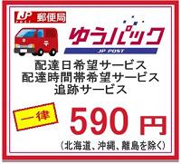 ゆうパック590円