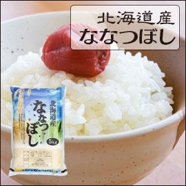 北海道 白米 1等米 ななつぼし 5kg×2袋
