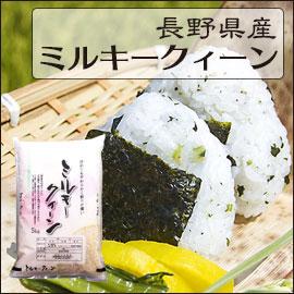 長野県 白米か玄米 1等米 ミルキークイーン 5kg