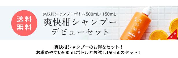 500mLボトルとお試し150mlのセット