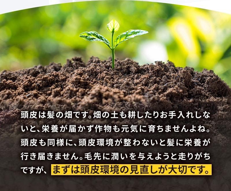 アミノ酸シャンプー爽快柑