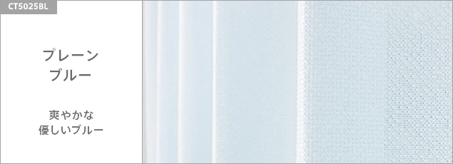 プレーン/ブルー