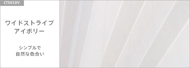 ワイドストライプ/アイポリー