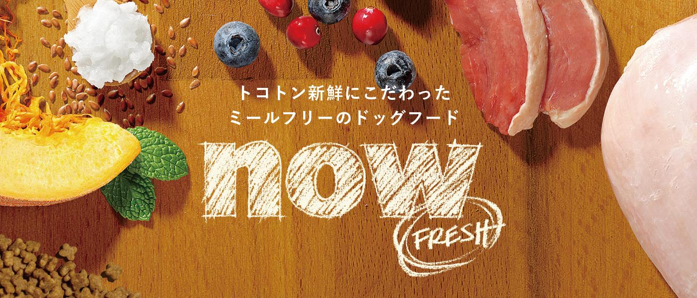 now fresh ナウフレッシュ グレインフリー