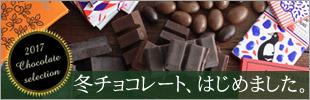 ホワイトいちごチョコ いちごチョコ フリーズドライ 含浸