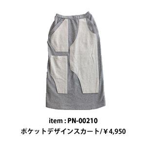 pn-00210