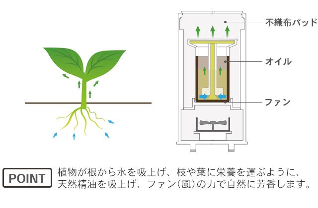 植物が根から水を吸い上げ、枝や葉に栄養を運ぶように、天然精油を吸い上げ、ファン(風)の力で自然に芳香します