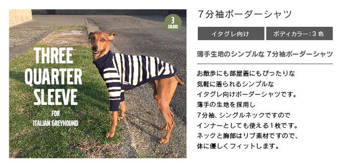 イタグレ服 犬服 イタリアングレーハウンド