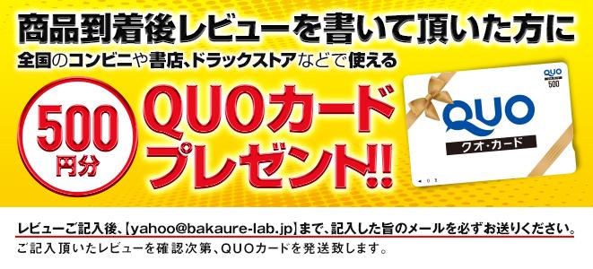 500円分QUOカードプレゼント!!