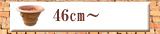 直径46cm以上