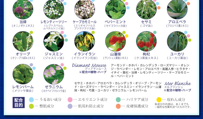 ジャスミンラロクー27種の植物成分