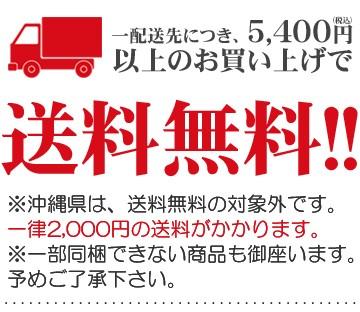 1配送先につき、5,400円以上で送料無料!※沖縄県は、送料無料の対象外です。一律2,000円の送料が掛かります。