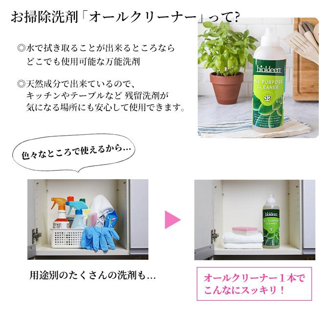 一般洗剤01