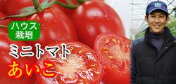 瑞々しい甘みにうっとり…ミニトマト ロケットトマト あいこ