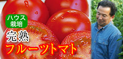 この美味しさ、食べれば納得!完熟フルーツトマト