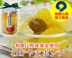 和歌山県産フルーツを贅沢に使用したポンチ!
