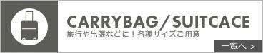 CARRYBAG/SUITCACE