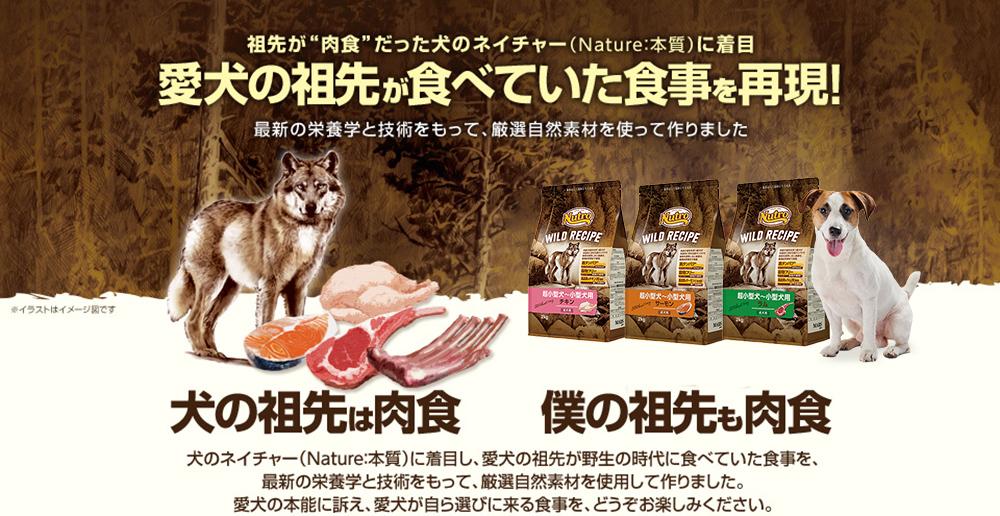 愛犬の祖先が食べていた食事を再現!