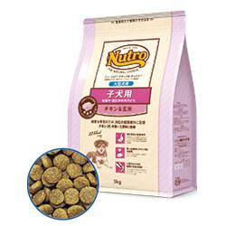 ナチュラル チョイス™ 子犬用 妊娠中・授乳中の母犬にも 大型犬用 チキン&玄米