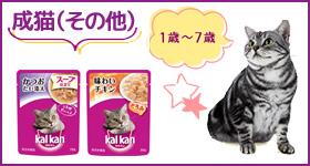 カルカン成猫(その他)