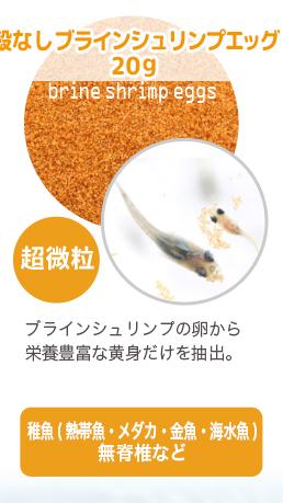 稚魚用フード