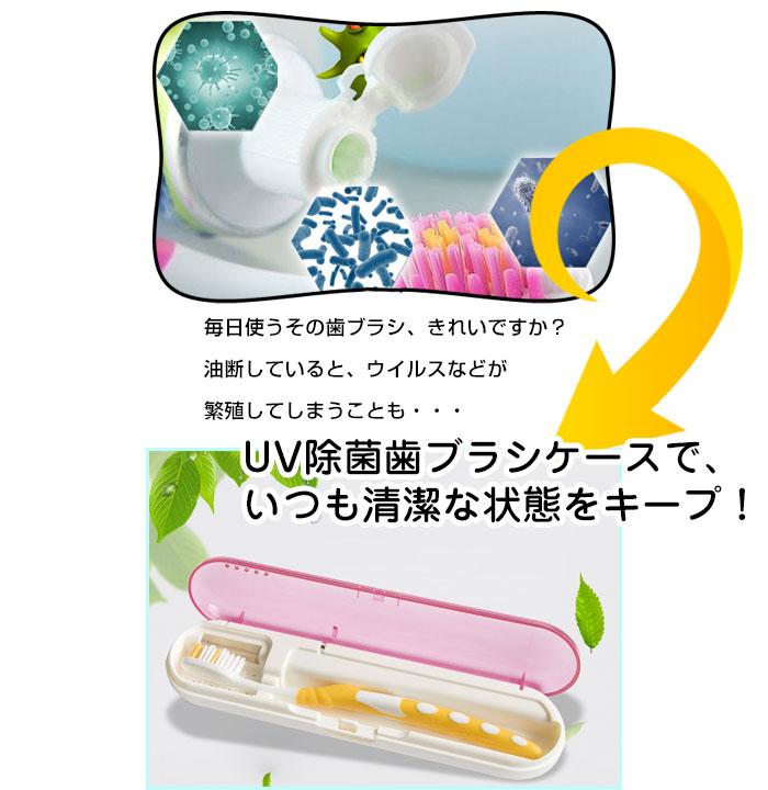 歯ブラシケース UV殺菌 除菌 紫外線 消毒 歯ブラシ入れ【日用雑貨】◇AT-08【ゆうパケットで送料無料】