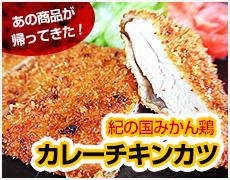 ロースチキンカツ(カレー味)