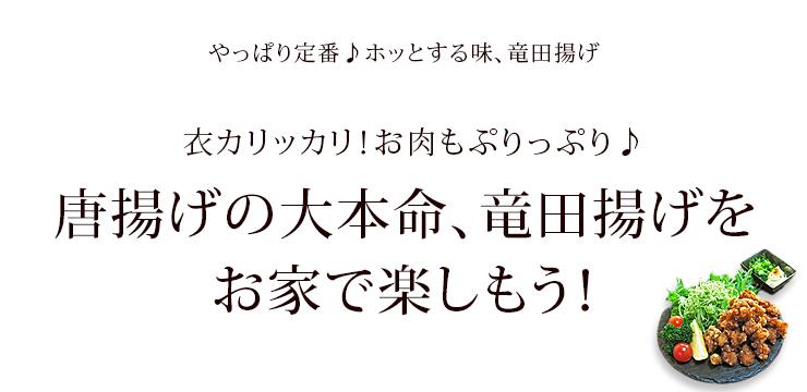 tatsuta-genkotsu-1