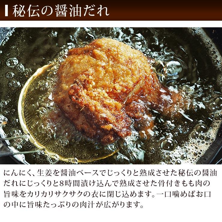 tatsuta-leg-3