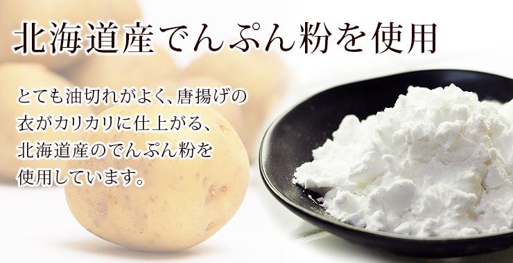 tatsuta-tip-8