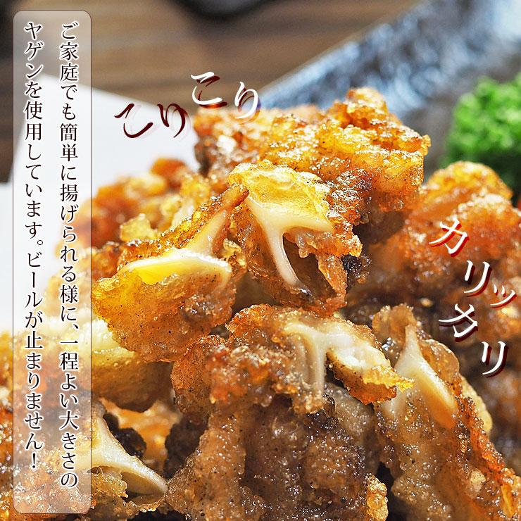 tatsuta-yagen-5