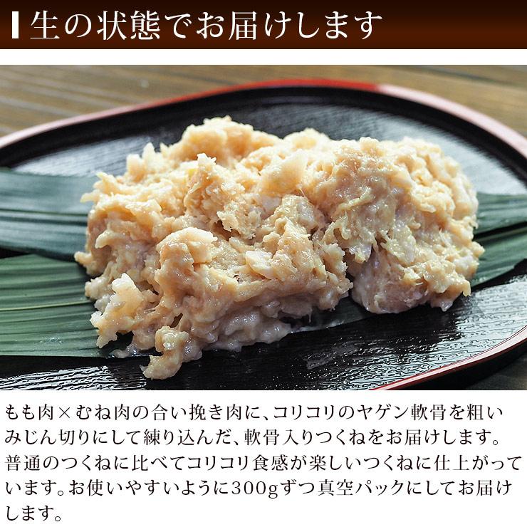 tsukune_yagen-14