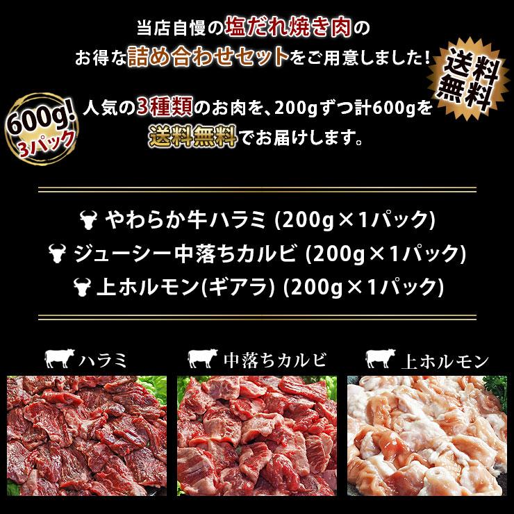 s600-take-2