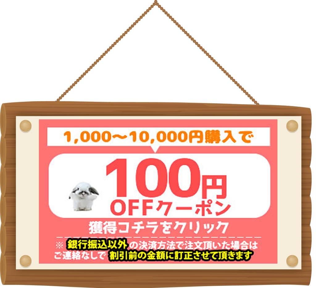 100円OFFクーポンをGET!
