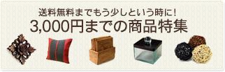 送料無料までもう少しという時に!3,000円までの商品特集