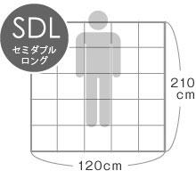 SD セミダブル
