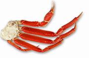 5L〜4Lサイズ ボイル本ずわい蟹肩脚
