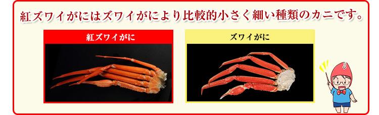紅ずわい蟹はズワイ蟹より比較的小さく細い種類のカニです。