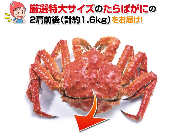 厳選特大サイズのたらば蟹の2肩前後をお届け!