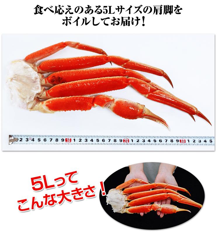食べ応えのある5Lサイズの肩脚をボイルしてお届け!5Lってこんな大きさ!