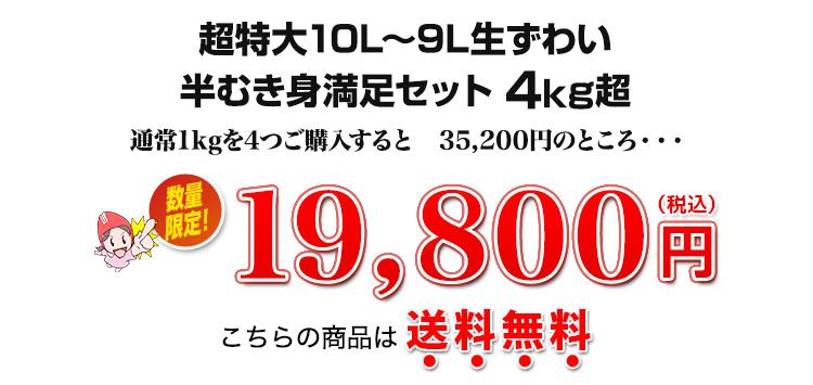 4kg超、19,800円(税込)