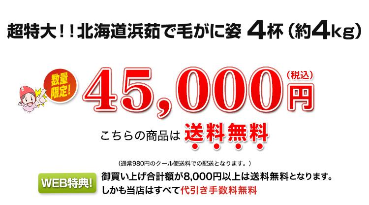 超特大!北海道浜茹で毛がに姿 4kg超(4杯)45,000円