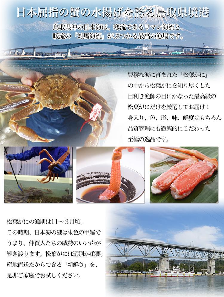 日本屈指の蟹の水揚げを誇る鳥取県境港