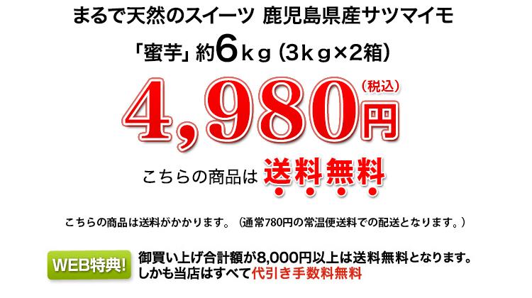 4,980円(税込)