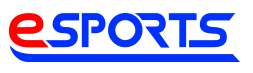 eSPORTS PayPayモール店