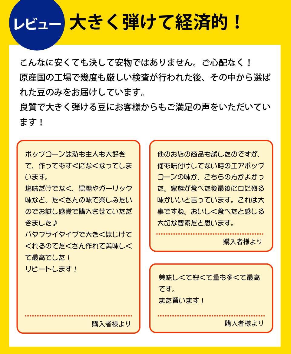 レビューご紹介