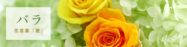 メインのお花 バラ