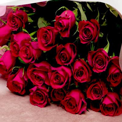 赤いバラの花束 10本~100本