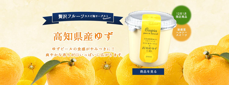 カスピ海ヨーグルト & 高知県産ゆず