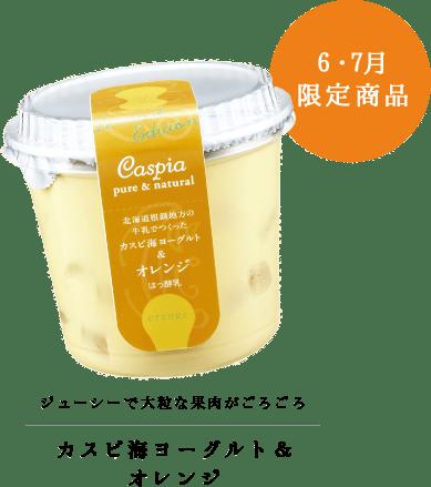 カスピ海ヨーグルト & オレンジ